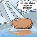 Humor - CAPIVARA ASSUME UMA CADEIRA NA SUPREMA CORTE - Sátira