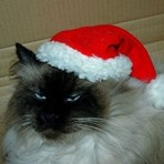 Humor - Feliz natal, hahaha'