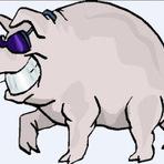 Para refletir: O motorista orgulhoso e o porco.