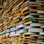 Livros - Não seja estúpido ao contratar uma editora sob demanda.