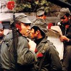 Portugal - A Revolução dos Cravos Vermelhos! Liberdade sempre!