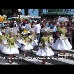 Portugal - Vamos divertirmo-nos com a Festa da Flor na Ilha da Madeira!!!