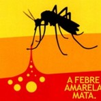 """Ciência - Saiba também: """" diferença entre febre amarela e amarelão"""""""