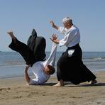 Aprenda as melhores técnicas do Aikido