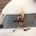 Espaço - Avião Embraer ERJ-190 Colide com Dois Gansos em Westchester County - NovaYorque