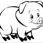 Contos e crônicas - O porco Smith