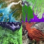 """Arte & Cultura - """"Deltas de rios lembram obras de arte moderna"""""""