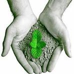 Meio ambiente - Sociedade ambiental X Pseudotradições