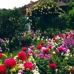 Contos e crônicas - O Canteiro do Jardim