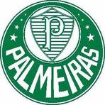 Futebol - Palmeiras é campeão da Copa Brasil 2.012