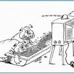 Entretenimento - A TV brasileira morreu!