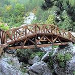 Contos e crônicas - A ponte de madeira