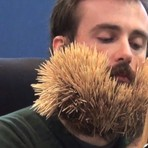 Entretenimento - Irlandês bate recorde ao colocar 3.107 palitos na barba