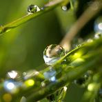 Entretenimento - Gotas de chuva!