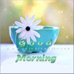 Contos e crônicas - • Buongiorno!…