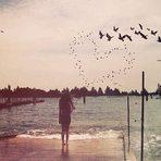 Contos e crônicas - A Uniformidade do Amor