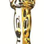 Conheça a lista dos indicados ao Oscar 2013