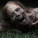 Entretenimento - The Walking Dead, 15 fatos que você não sabia sobre a série
