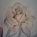 Design - Desenhos Artisticos feito por mim em BREve desenhos novos!!!