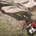 Riachão do Jacuípe: Motorista de L200 morre e carreteiro fica gravemente ferido em colisão próximo a cidade (veja as ima