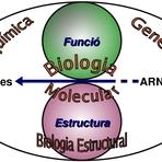 Livros - Como estudar biologia para o vestibular  - Orfury
