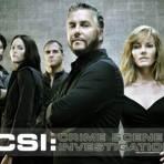 Entretenimento - Criador da série CSI sonha com versão brasileira