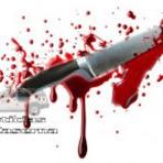 Violência - Crime Bárbaro: Adolescente é morto com 32 facadas no Sul de Minas (REDS)