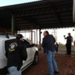 Utilidade Pública - Leite é adulterado com produto cancerígeno no Rio Grande do Sul