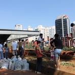 Meio ambiente - Nasce mais uma hortal urbana, no Centro Cutlural São Paulo