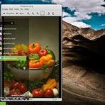 Linux - Conheça quais serão as novidades do Linux Mint 15