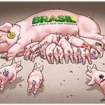 Opinião - Brasil: Ignorância e Involução sob medida