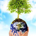 Opinião - Meio Ambiente