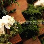Arquitetura e decoração - Recrie seu ambiente utilizando cachepôs e floreiras sustentáveis.