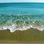 Meio ambiente - Porque devemos nos preocupar com o mar?
