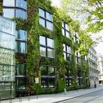 Meio ambiente - Francês viaja o mundo construindo jardins verticais nas cidades