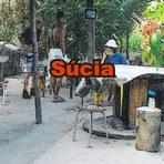 Livros - Súcia - Contos - Escritor - Col Tormenta - Lançamentos Editora AMC Guedes