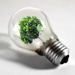 Meio ambiente - Definição de Sustentabilidade