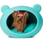 Animais - Cama: todo cão deve ter uma