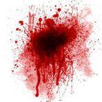 Violência - Filho mata pai a pauladas e depois bebe o sangue da vítima