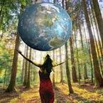 Meio ambiente - Consumo ultrapassou capacidade de renovação que a Terra poderia oferecer em 2013