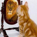 O autoconhecimento é uma porta aberta para o sucesso!
