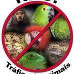 Animais - Contra o tráfico de animais