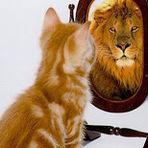 Pessoal - Ninguém é obrigado a ver você como você si vê