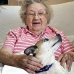 Animais - Tratamento de idosos, com cães