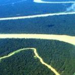 Meio ambiente - Desmatamento da Amazônia aumentou 28% em 12 meses
