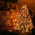 Mulher - Natal sem árvore
