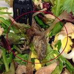 Mistérios - MUNDO: Mulher fica chocada ao achar sapo morto em salada