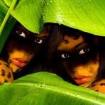 Utilidade Pública - CNBB lança campanha contra o tráfico humano