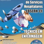 Pintura - Apostila Concurso Empresa Brasileira de Serviços Hospitalares (EBSERH) / CE TÉCNICO DE ENFERMAGEM