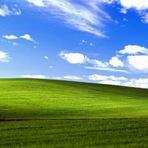 Negócios & Marketing - Microsoft divulga carta de despedida do Windows XP